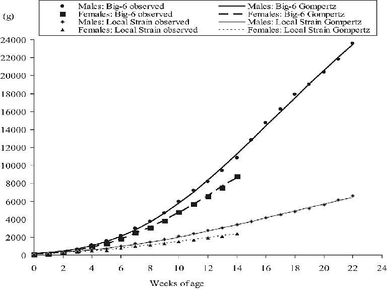 Comparison of the growth of both sexes of slow- (SG) and fast-growing (FG)  turkeys over the experimental period